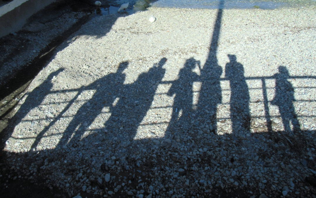 Schattenarbeit – Das Geschenk des Schattens