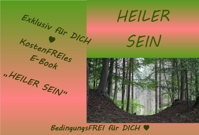 Buchgeschenk HEILER SEIN für DICH ♥