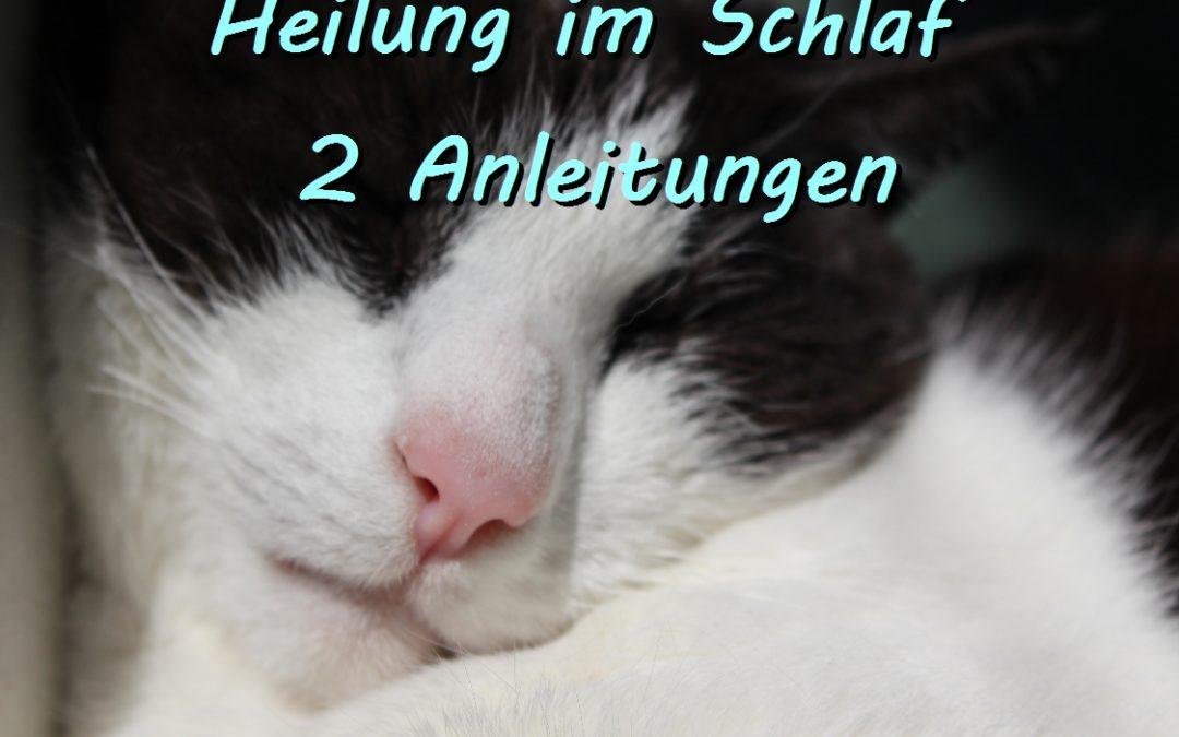"""Heilung im Schlaf – der Weg des """"faulen"""" Heilers"""